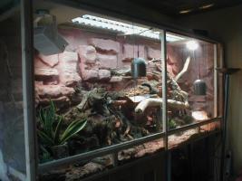 Terrarium 240x80x100 cm