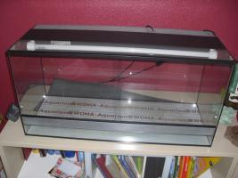 Terrarium aus Glas 1m x 40cm x50 inkl. Beleuchtung
