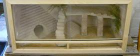 Foto 2 Terrarium komplett mit 1 Baby Bartagame…