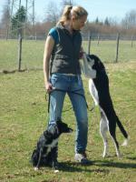 Foto 3 Tier- und Hausbetreuung