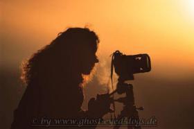Tierfotografie Ghost Eyed Dogs