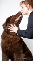 Foto 6 Tierfotografie & Workshops