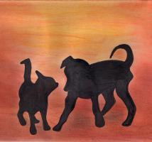 Tierheilpraktikerin bietet energetische Hilfe für Ihr Tier!