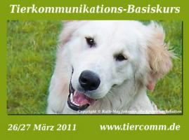 Tierkommunikation - Erfahren was Ihr Tier fühlt