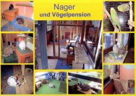 Vogel und Nagepension