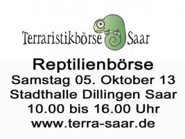 Tische für Reptilienbörse am 05.10.13