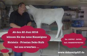 Foto 5 Tja wenn Dein Nachbar ne Deko kuh kauft dann hol Dir doch einen Deko Bullen...