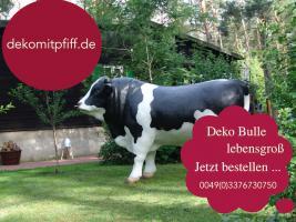 Foto 6 Tja wenn Dein Nachbar ne Deko kuh kauft dann hol Dir doch einen Deko Bullen...