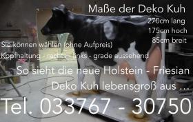 Foto 8 Tja wenn Dein Nachbar ne Deko kuh kauft dann hol Dir doch einen Deko Bullen...