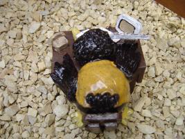 Foto 3 Tonfigur Keramikfigur Rabe am Schreibtisch Gartendeko Geschenk