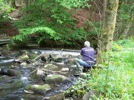 Foto 4 Top Angelgewässer*Bach*Forellenbach im Bergischen Land*Pacht*Verpachtung*Angler*Fliegenfischen
