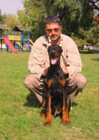 Foto 4 Top Dobermann Welpen zum Verkauf