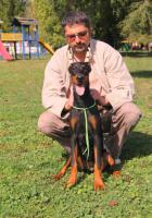Foto 6 Top Dobermann Welpen zum Verkauf