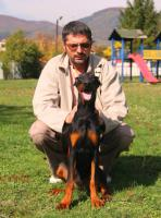 Foto 8 Top Dobermann Welpen zum Verkauf