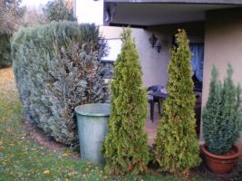 Foto 7 Top Einfamilienhaus mit ELW von privat zu verkaufen