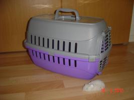Transportbox für die Katze.