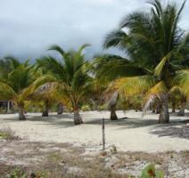 Traumgrundstueck in der Karibik (Belize)