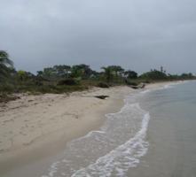 Foto 3 Traumgrundstueck in der Karibik (Belize)