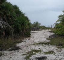 Foto 4 Traumgrundstueck in der Karibik (Belize)