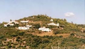 Foto 2 Traumgrundstueck auf dem Peloponnnes/Griechenland