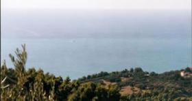 Foto 3 Traumgrundstueck auf dem Peloponnnes/Griechenland