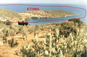 Foto 2 Traumgrundstueck auf dem Pilion/Griechenland