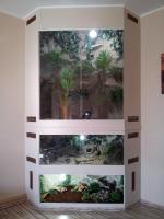 Traumhaftes Terrarium 3 in 1