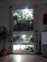 Foto 2 Traumhaftes Terrarium 3 in 1