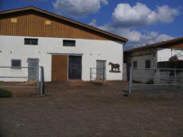 Foto 2 Traumlaufstall für Ihr Pferd!