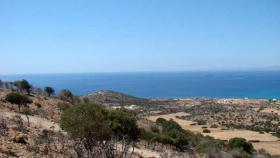 Two large plots on the island of Naxos/Griechenland