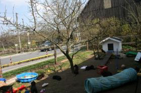 Foto 3 Typvolle Retriever Welpen suchen noch ein liebes Zuhause