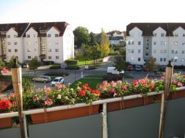 Foto 5 *URGEMÜTLICH* teilmöbl. Maiss. 1,5 Raum DG- Wohnung , Laminat, EBK, Balkon, Borsdorf