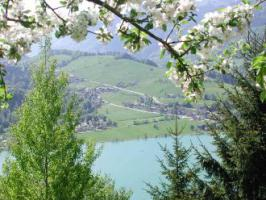 Thiersee Sommer1