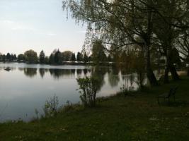 Ludwigshofsee