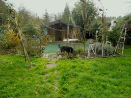 Foto 3 -Übernahme eines gepachteten Garten in Frankfurt am Main-