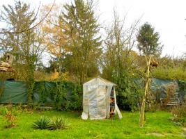 Foto 4 -Übernahme eines gepachteten Garten in Frankfurt am Main-