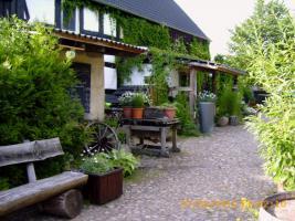 Foto 3 Umgebauter Bauernhof / Jetzt Wohnhaus plus 3 Apartments