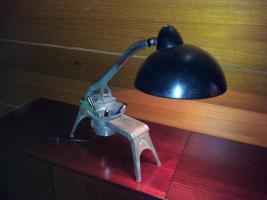 Ungewöhnliche Tichlampe