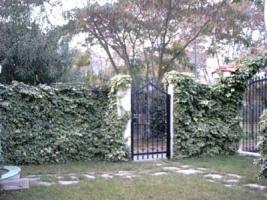 Foto 3 Unser Angebot Einfamilienhaus auf Halkidiki/Makedonien/Griechenland