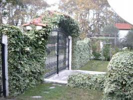 Foto 4 Unser Angebot Einfamilienhaus auf Halkidiki/Makedonien/Griechenland