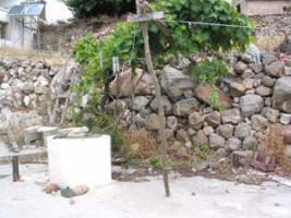 Foto 4 Unser Angebot auf der Halbinsel Methana/Peloponnes/Griechenland