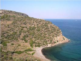 Unser Angebot auf der Insel Egina/Griechenland