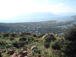 Foto 2 Unser Angebot auf der Insel Egina/Saronischer Golf/Griechenland