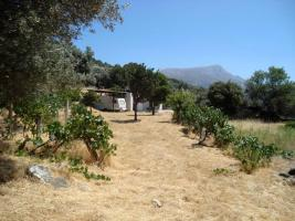 Unser Angebot auf der Insel Naxos/Griechenland