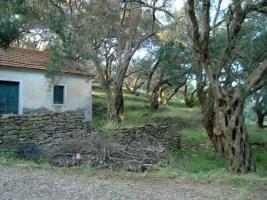 Foto 3 Unser Angebot auf der Insel Othoni/nahe Korfu/Griechenland