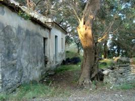 Foto 4 Unser Angebot auf der Insel Othoni/nahe Korfu/Griechenland