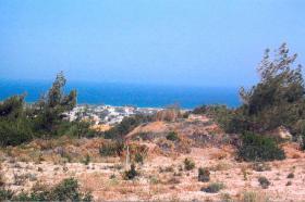 Foto 2 Unser Angebot auf der Insel Rhodos/Griechenland