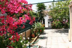 Foto 4 Unser Angebot auf der Insel Rhodos/Griechenland