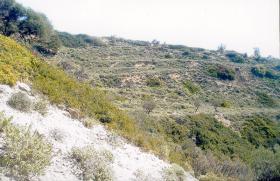 Unser Angebot auf der Insel Skyros/Griechenland