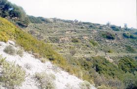 Foto 2 Unser Angebot auf der Insel Skyros/Griechenland